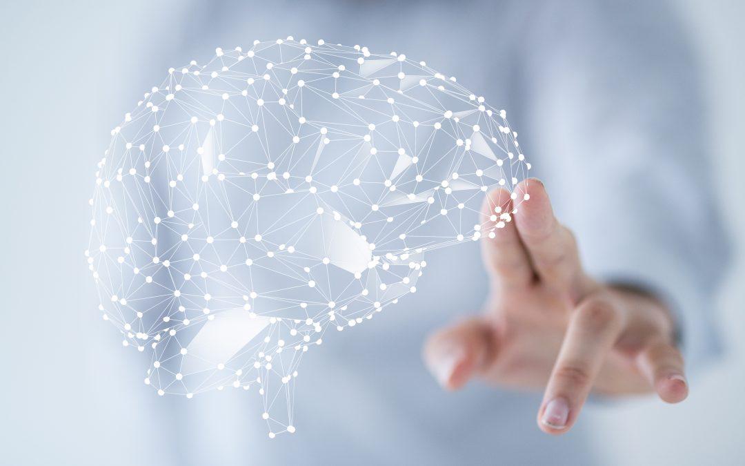 Je darmen zijn je tweede brein